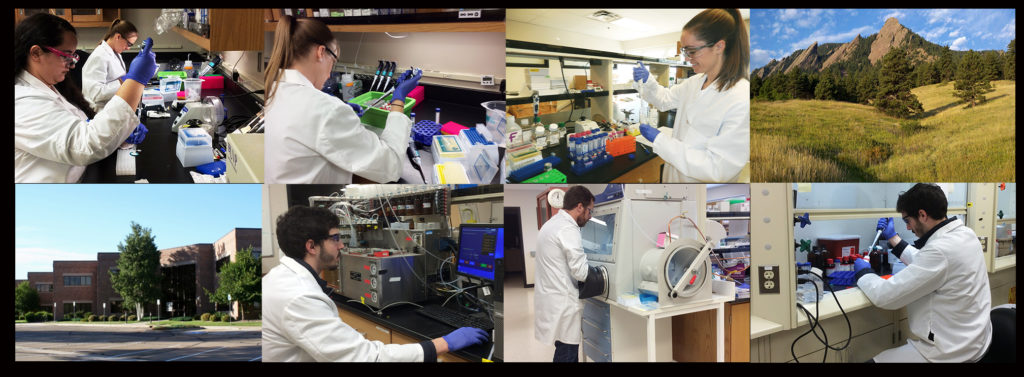 Researchers at i2 Pharmaceuticals work in the lab